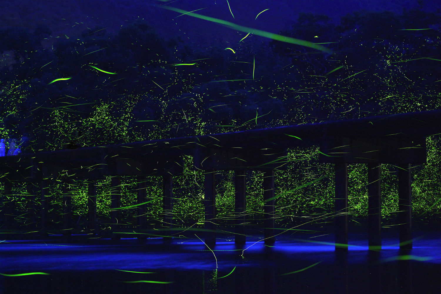 Takehito Miyatake japanese photography landscape colour