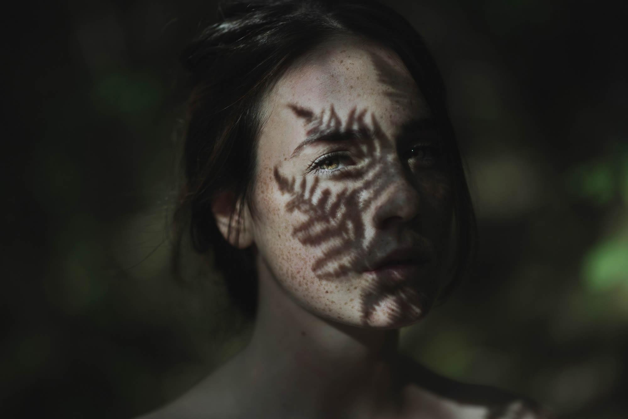 Shadow Portraits in Nature by Alessio Albi