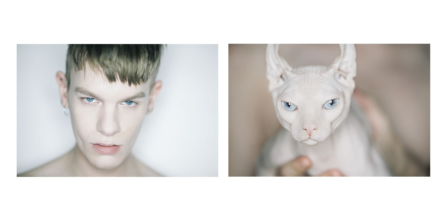 man comparison to cat, blue eyes