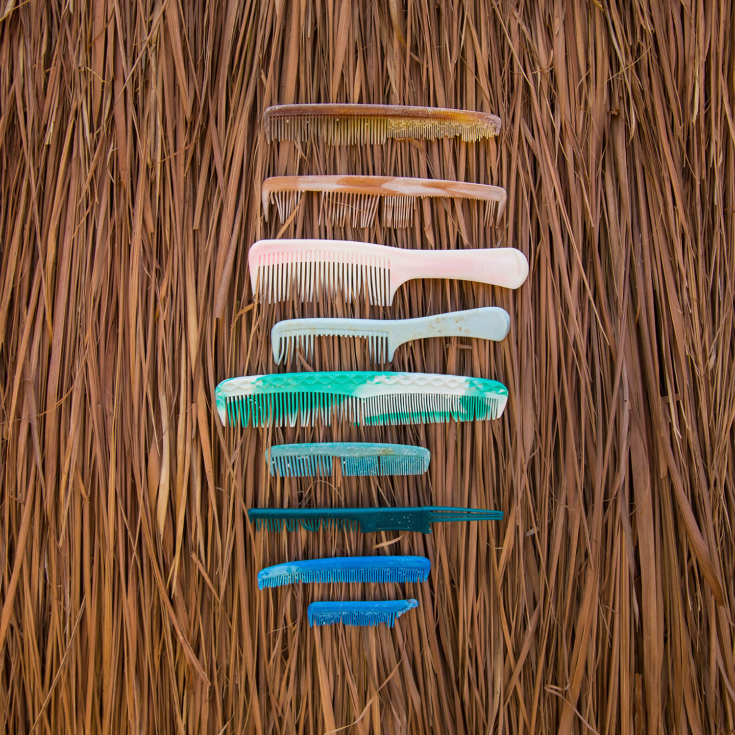 line up of combs