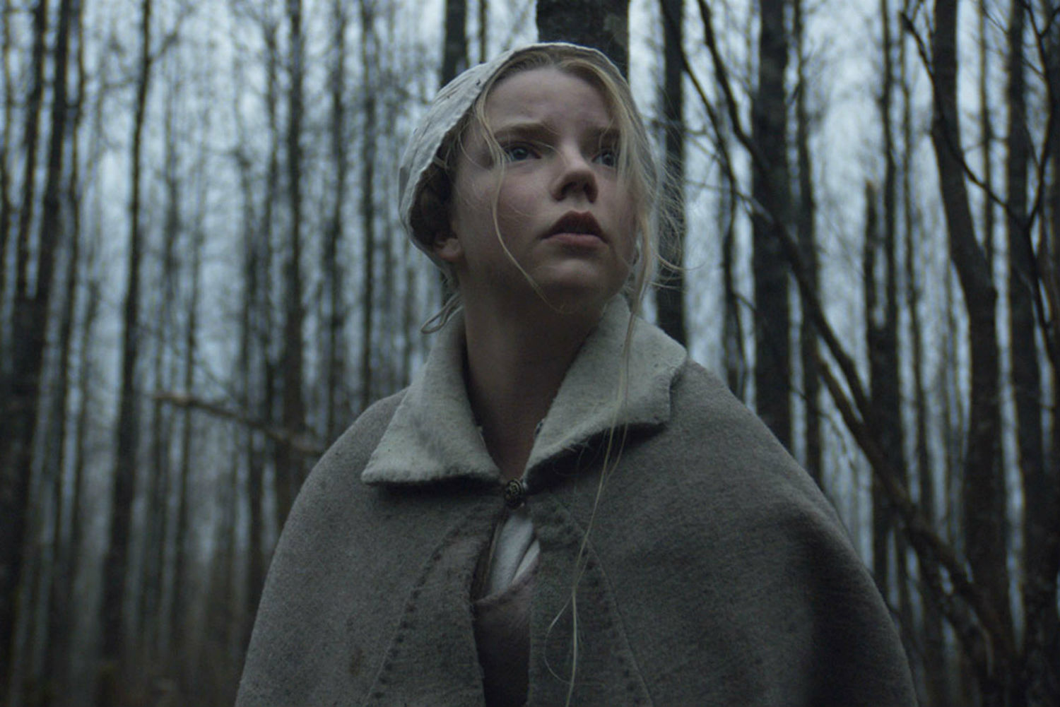 the witch film indie 2015 horror woods