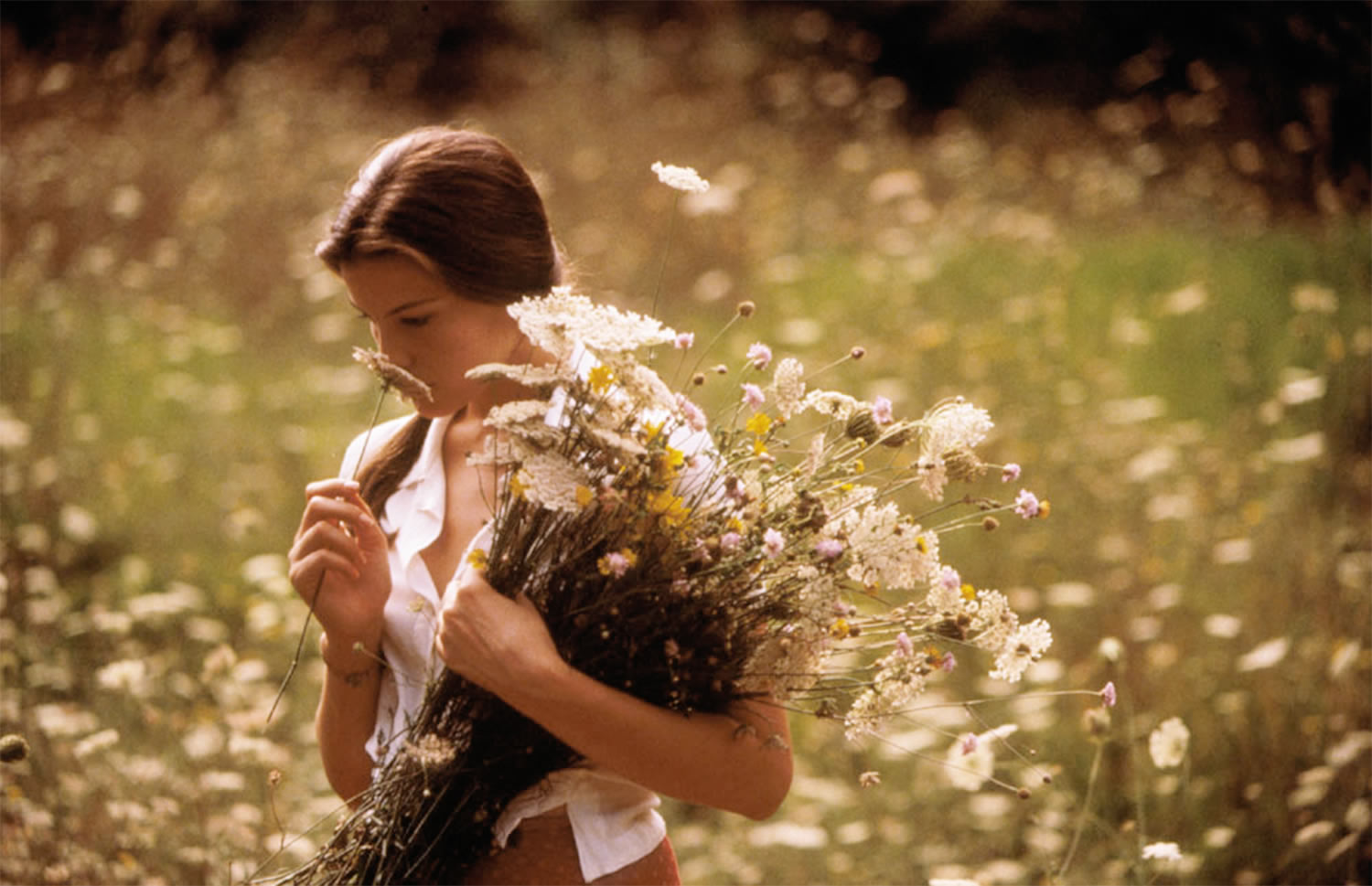 stealing beauty flowers liv tyler