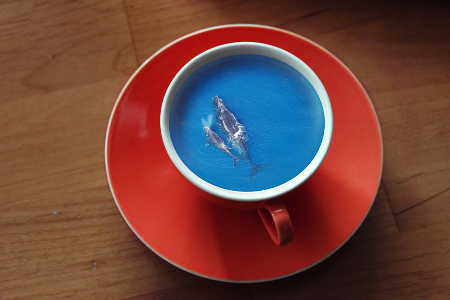 whales swimming in coffee cup