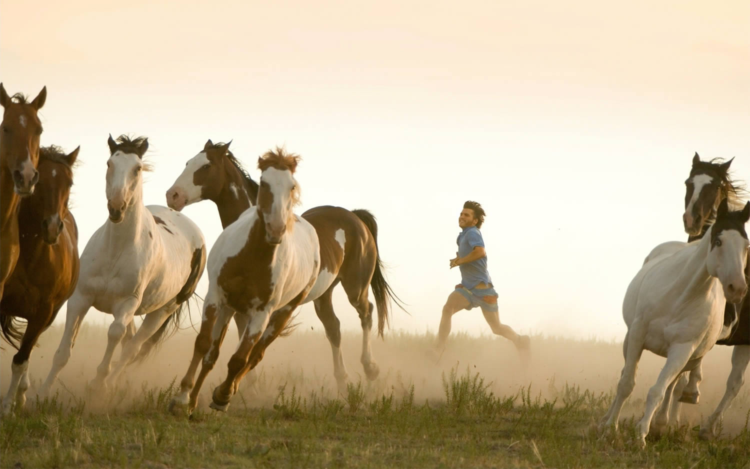 running with horses in into the wild, movie
