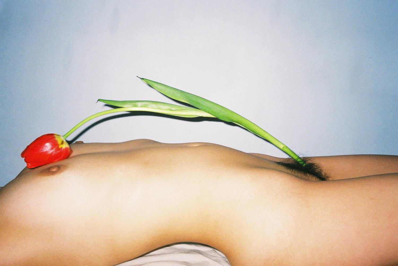 tulip over female body