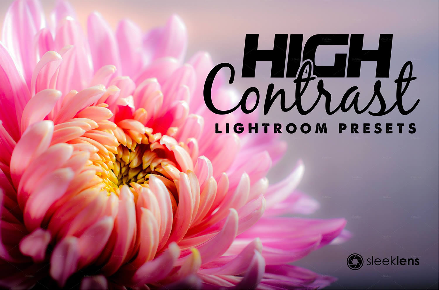 high contrast lightroom preset by sleeklens