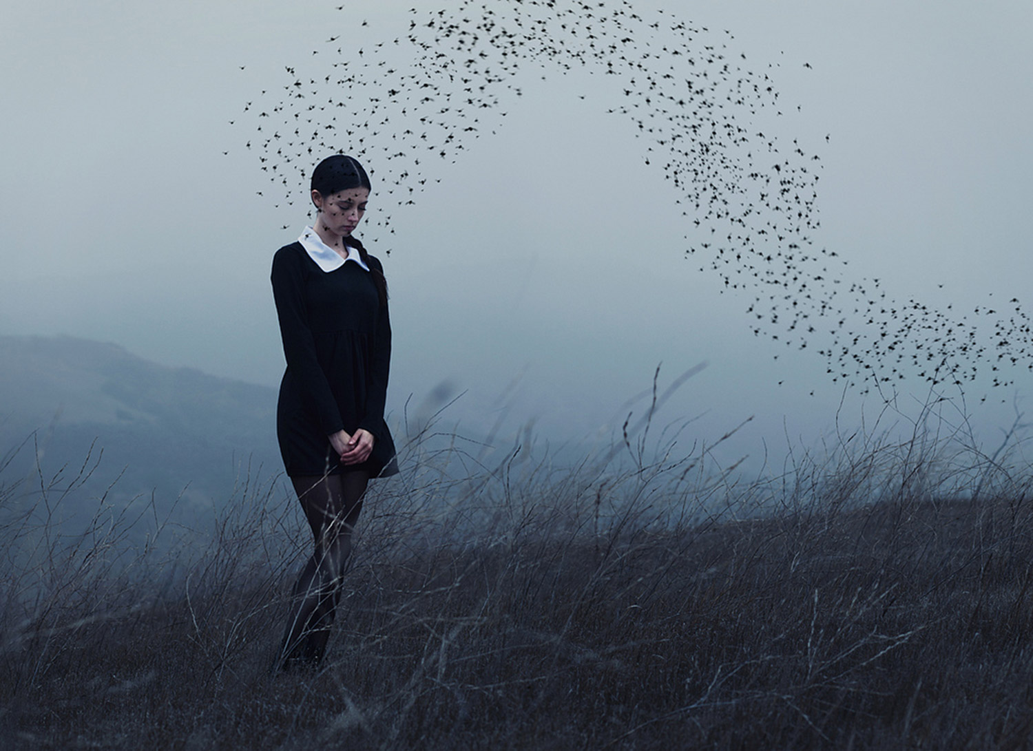 Alex Stoddard, In the Wake of Thunder, girl, storm clouds and a flock of birds