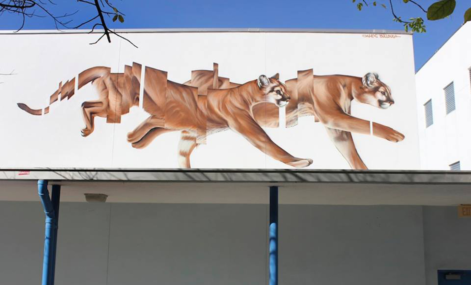 segmented mural of wildcats running by james bullough