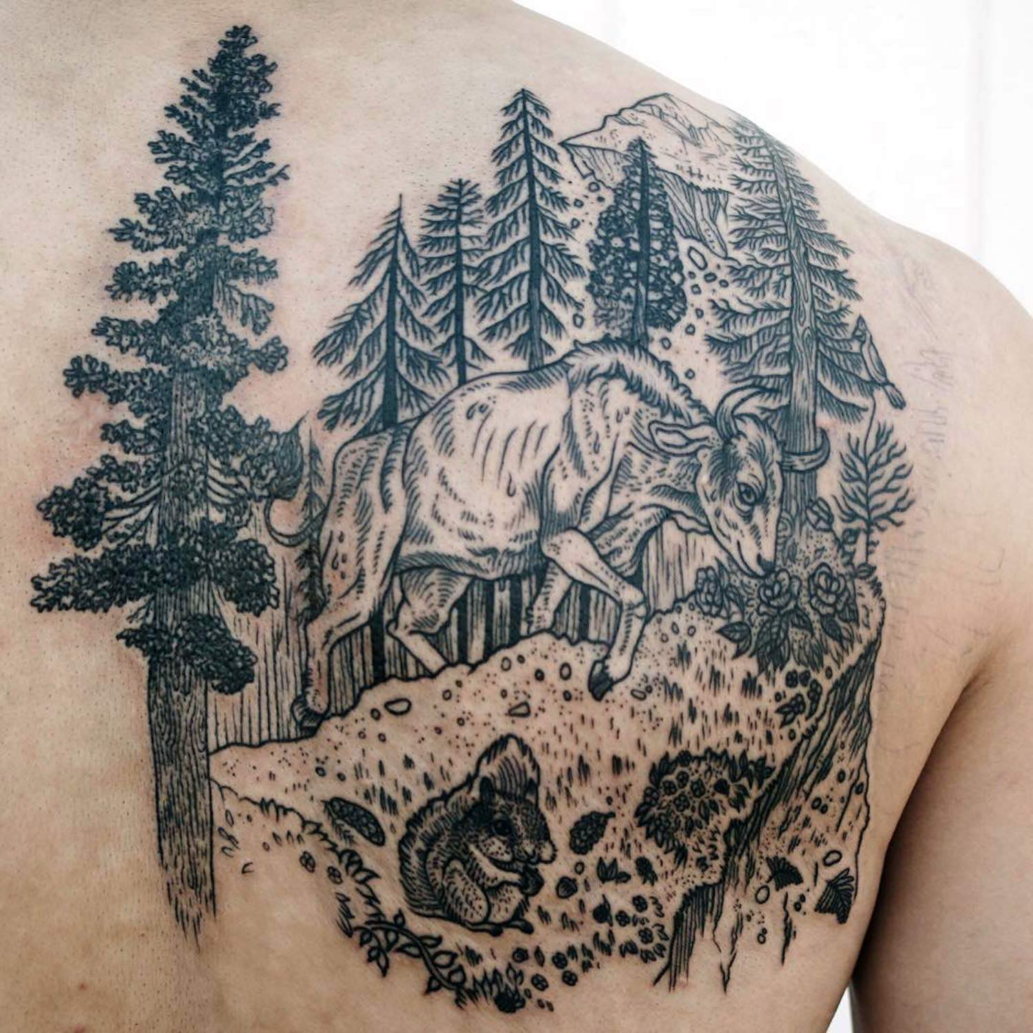Nature scene tattoo on back