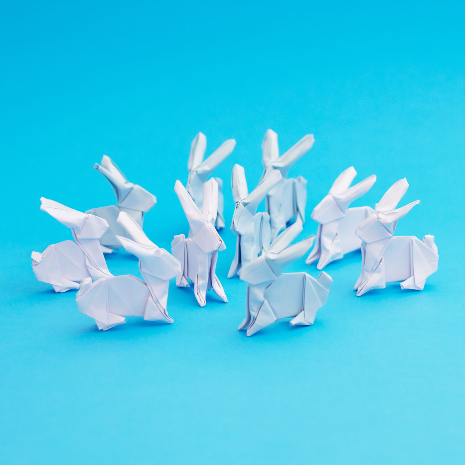 white rabbits , origami
