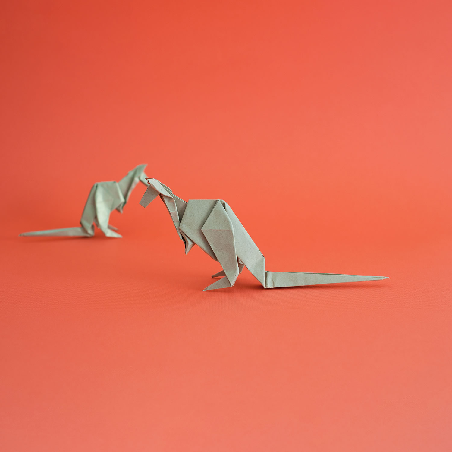 two kangaroos, origami
