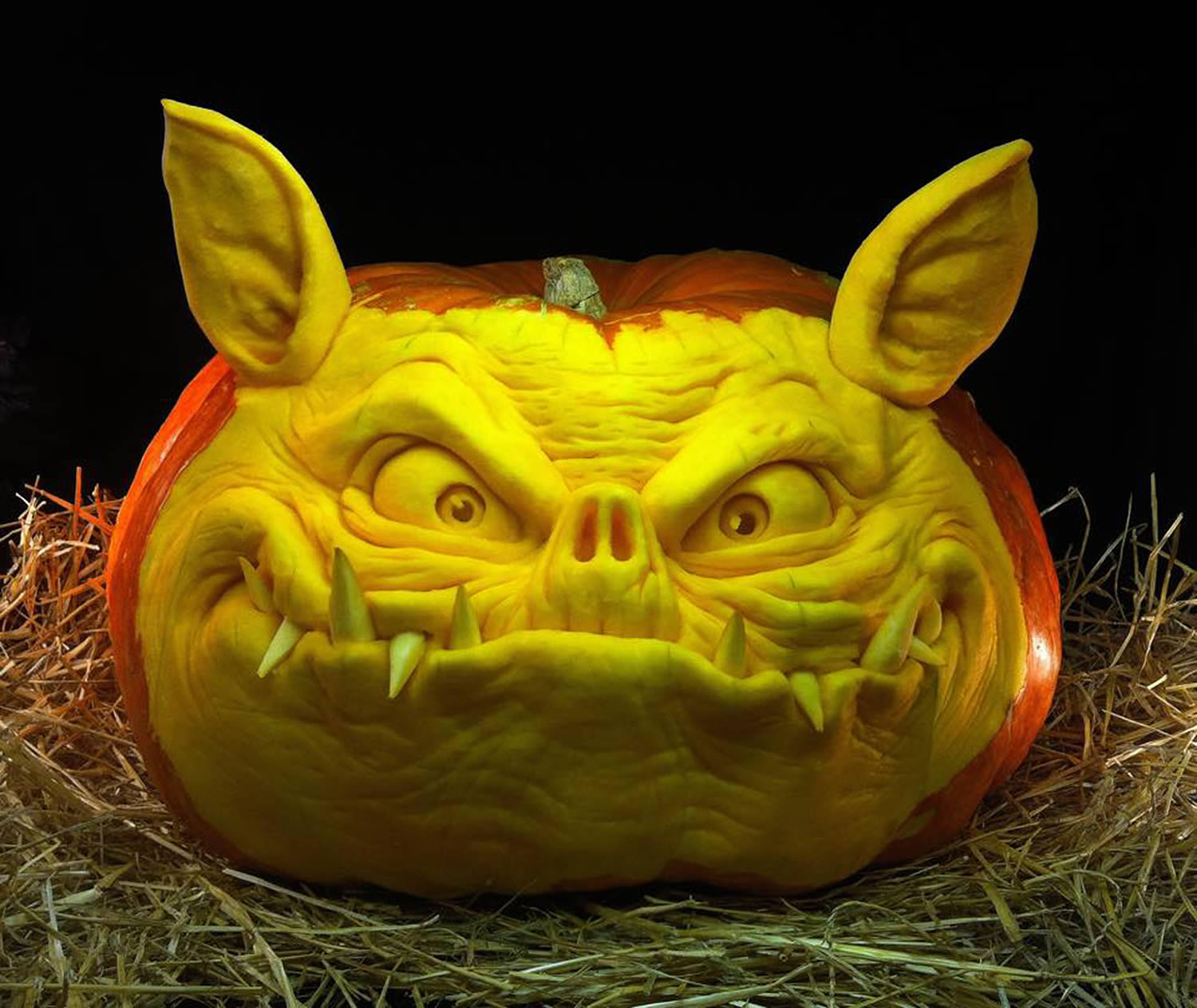ugly bat face pumpkin