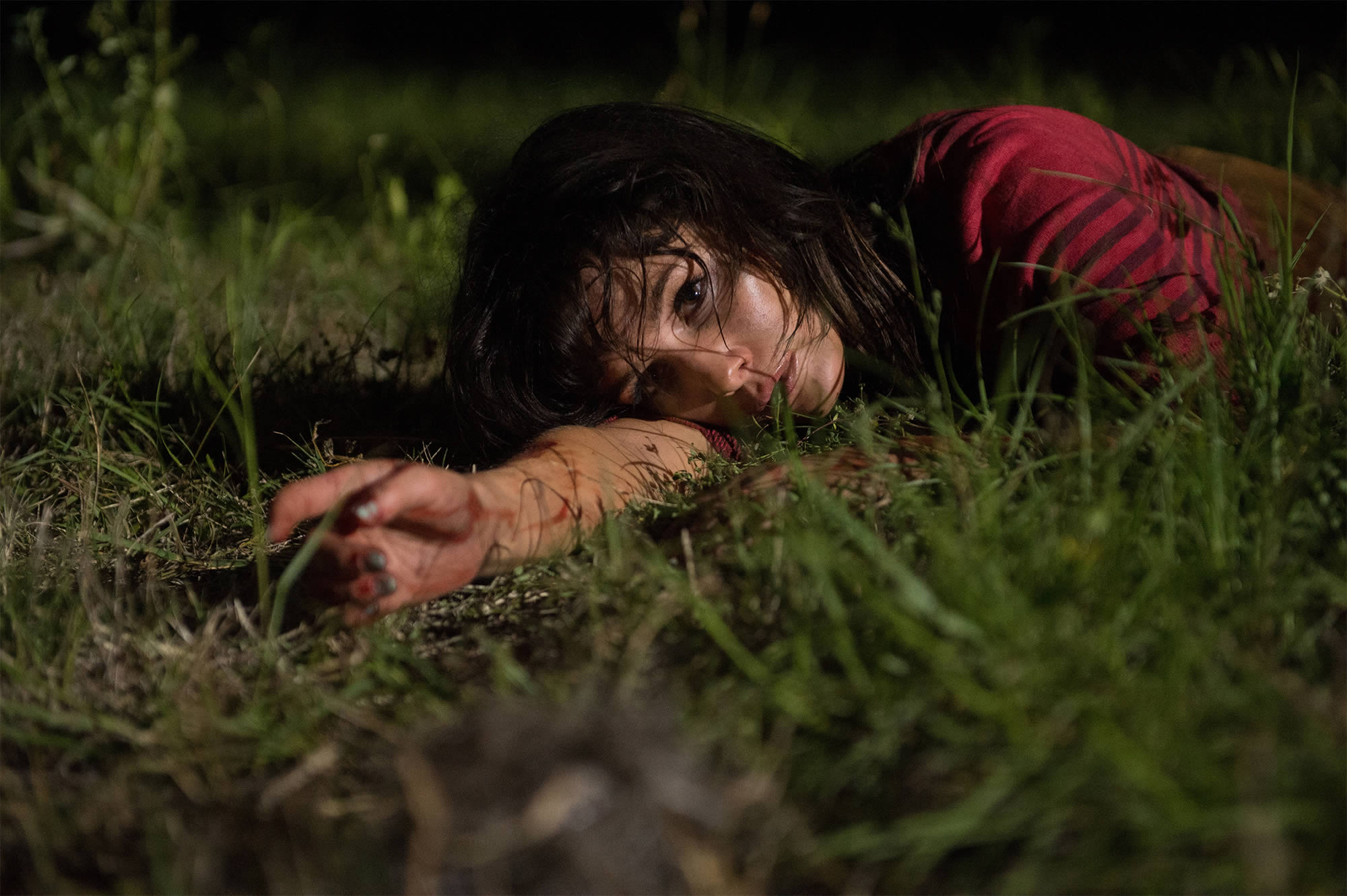 The Ten Best Horror Movies of 2015