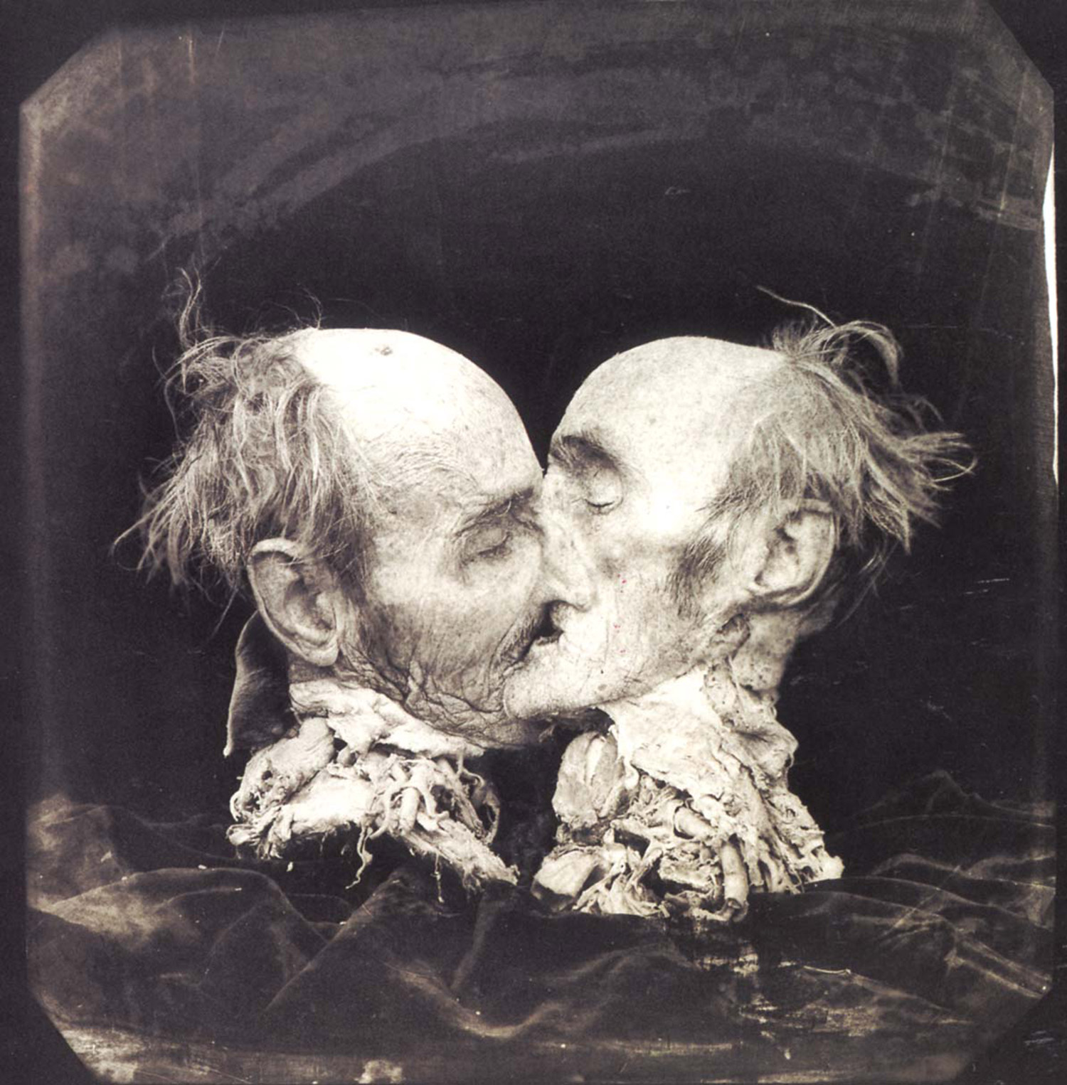 Joel Peter Witkin - black and white photo of two halves of severed head kissing