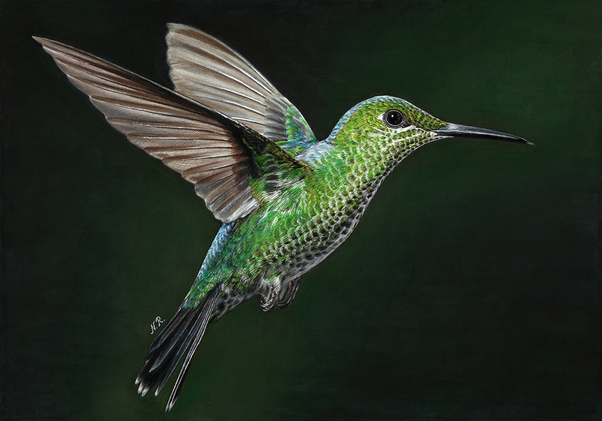 green and blue hummingbird, hyperrealistic drawing