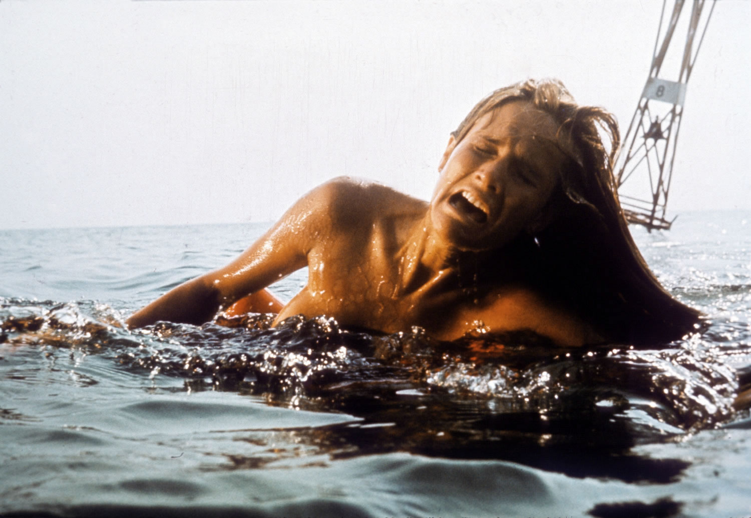 woman being attacked by a shark, jaws directed by spielberg