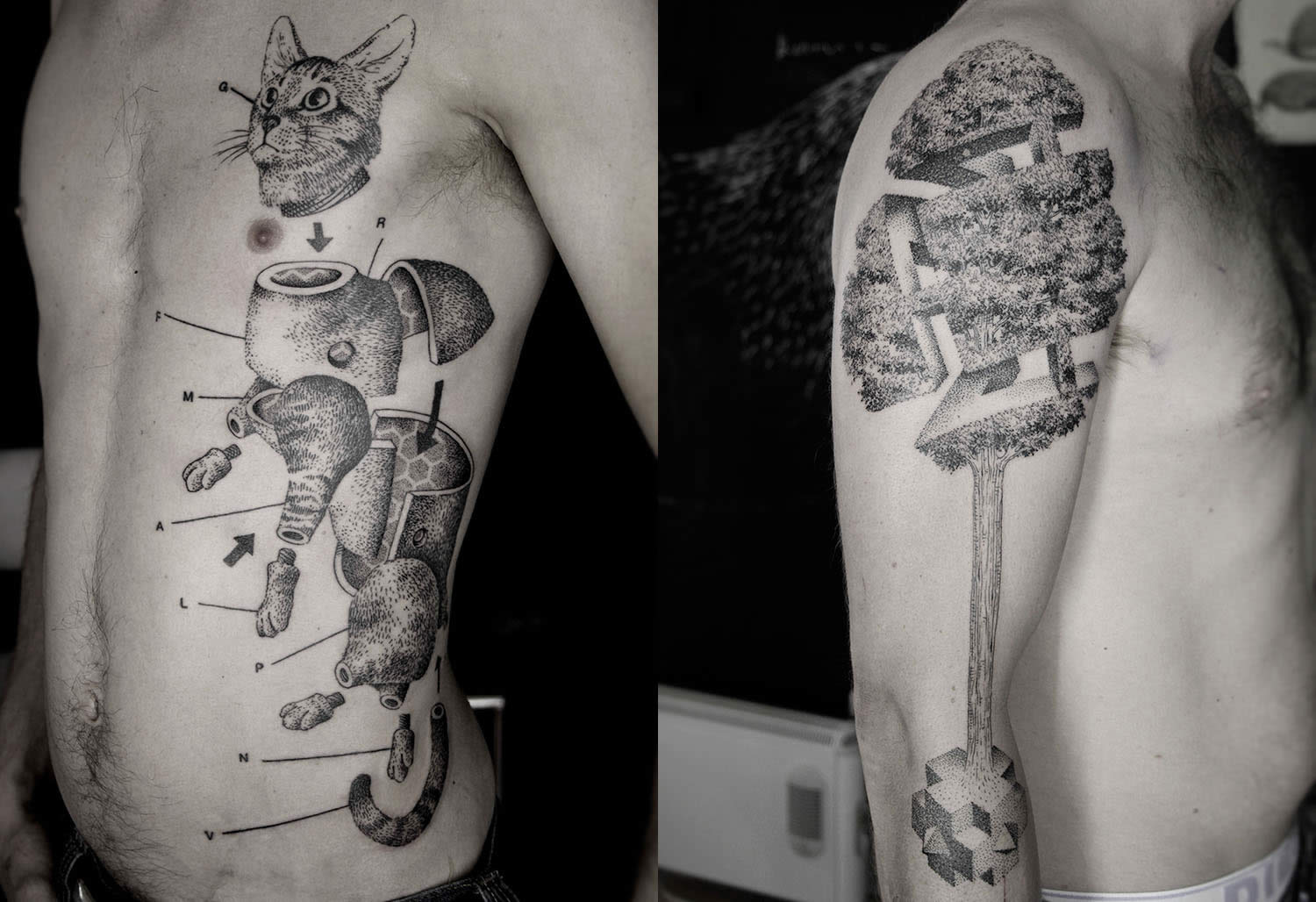 cut up cat tattoo and 3d tree escher style by ottorino d'ambra