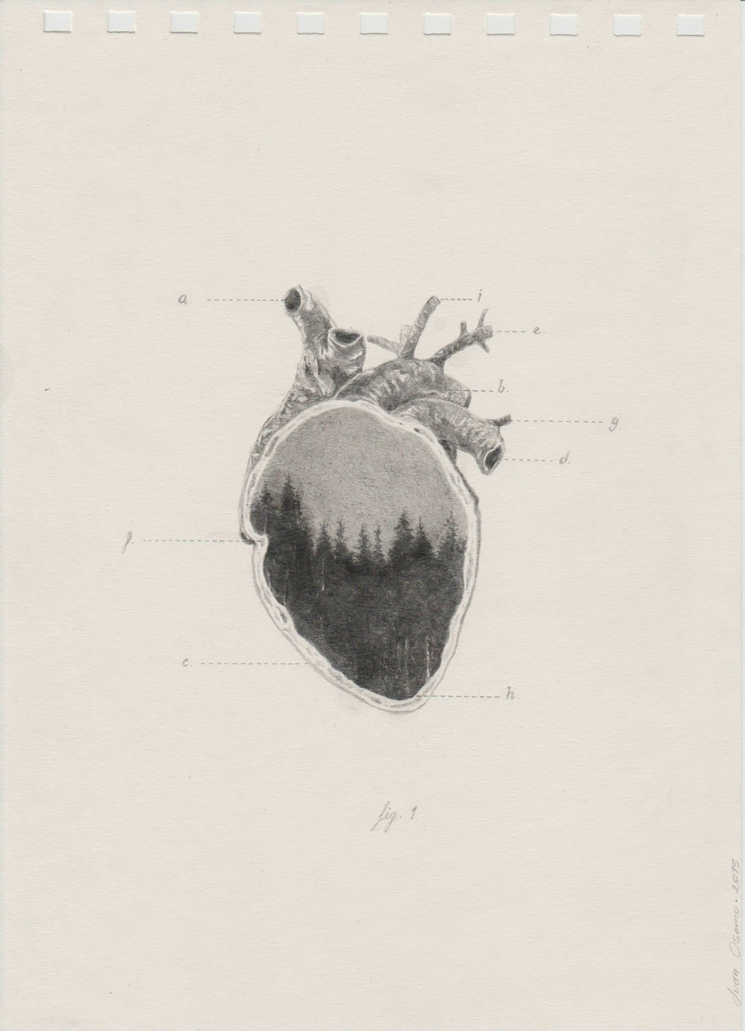 heart with double exposure landscape image, drawing