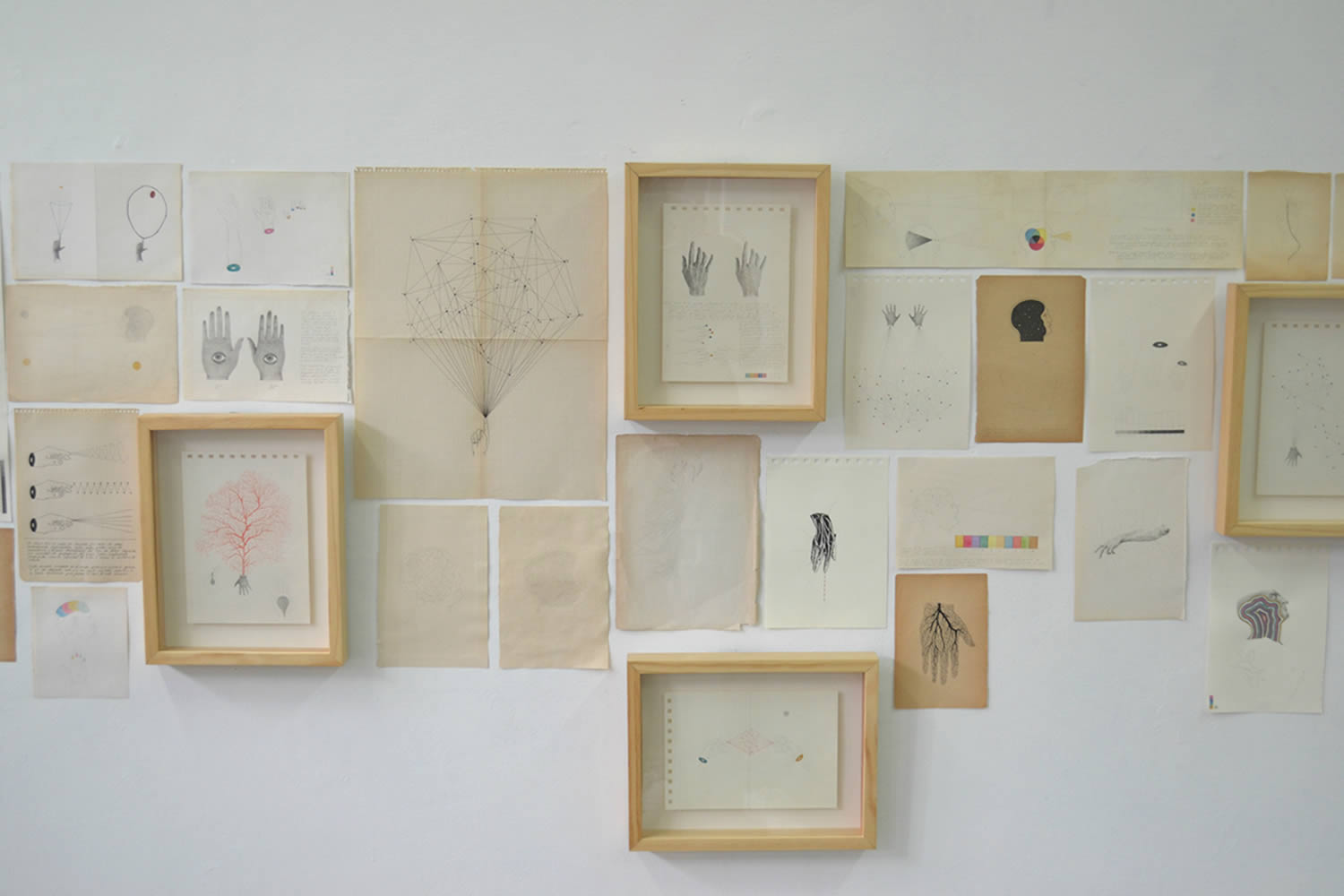 various drawings on wall, exhibition