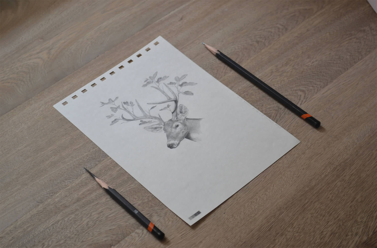dear with plant antlers, drawing