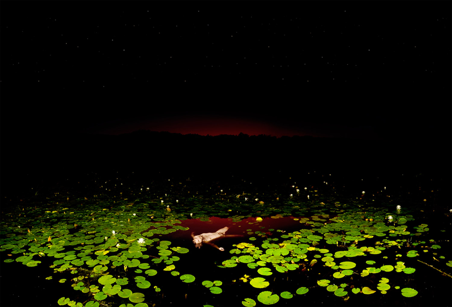 Bear Kirkpatrick, Inside Isaiah God Saw The Worldsheet Burning - figure submerged in pond with lily pads