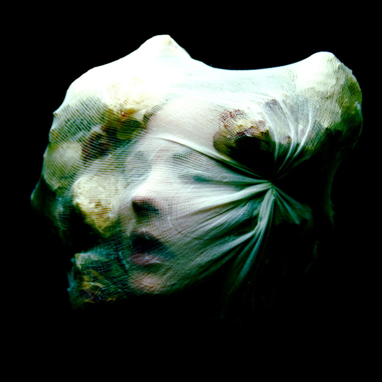 Helen Warner - Helichrysum bracteatum - woman with cloth over face