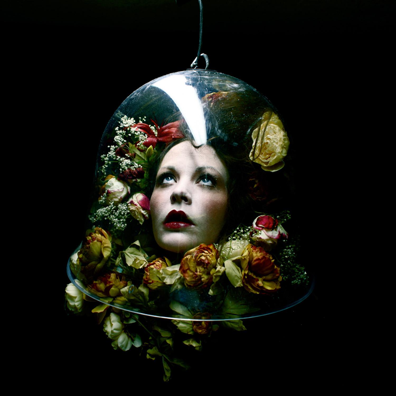 Helen Warner, Preservation - melancholic head among flowers in a bell jar