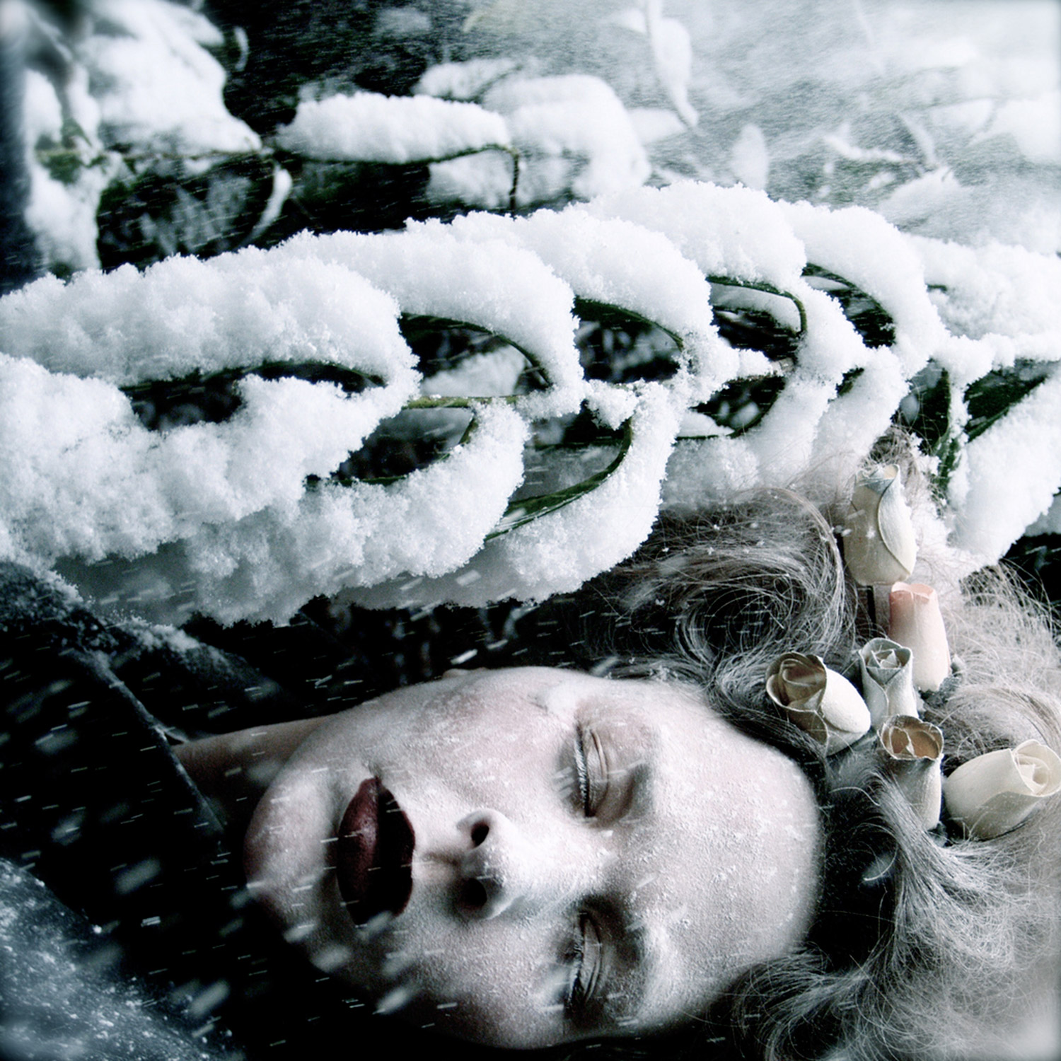 Helen Warner, She Sleeps Until the Snow Falls - woman sleeping on forest floor in falling snow