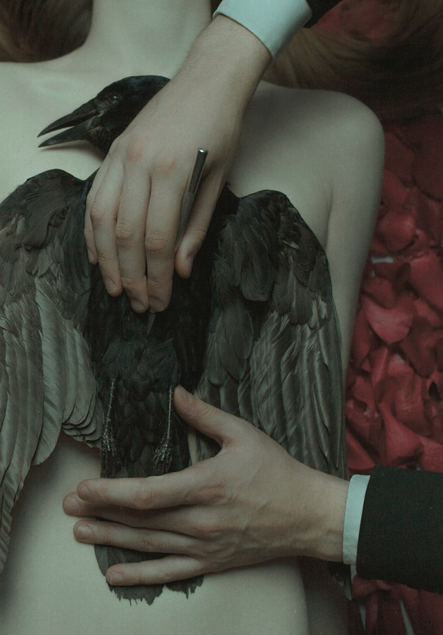 Laura Makabresku, Lessons of Darkness - dead bird laid on body