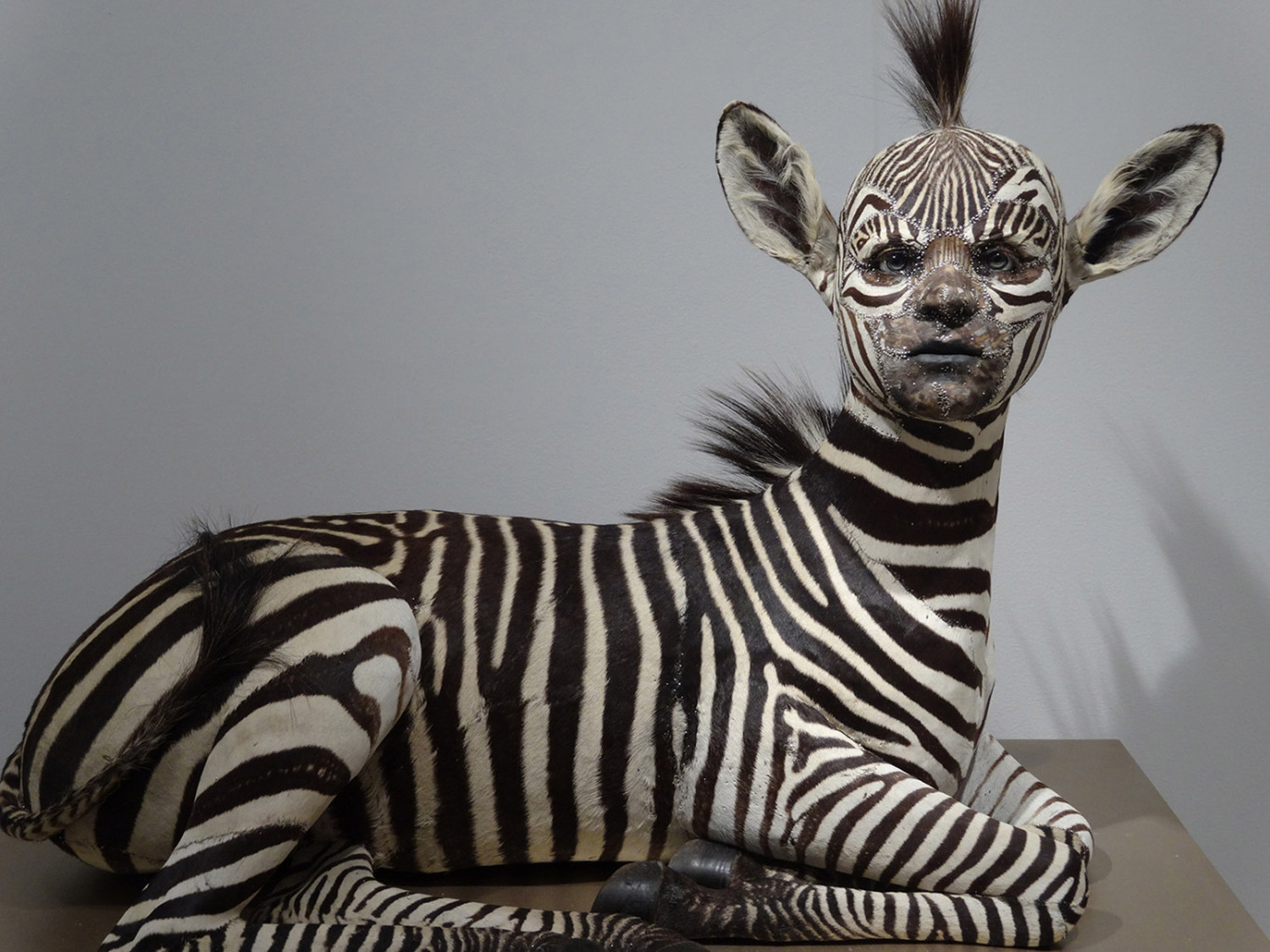 Kate Clark - zebra with human face