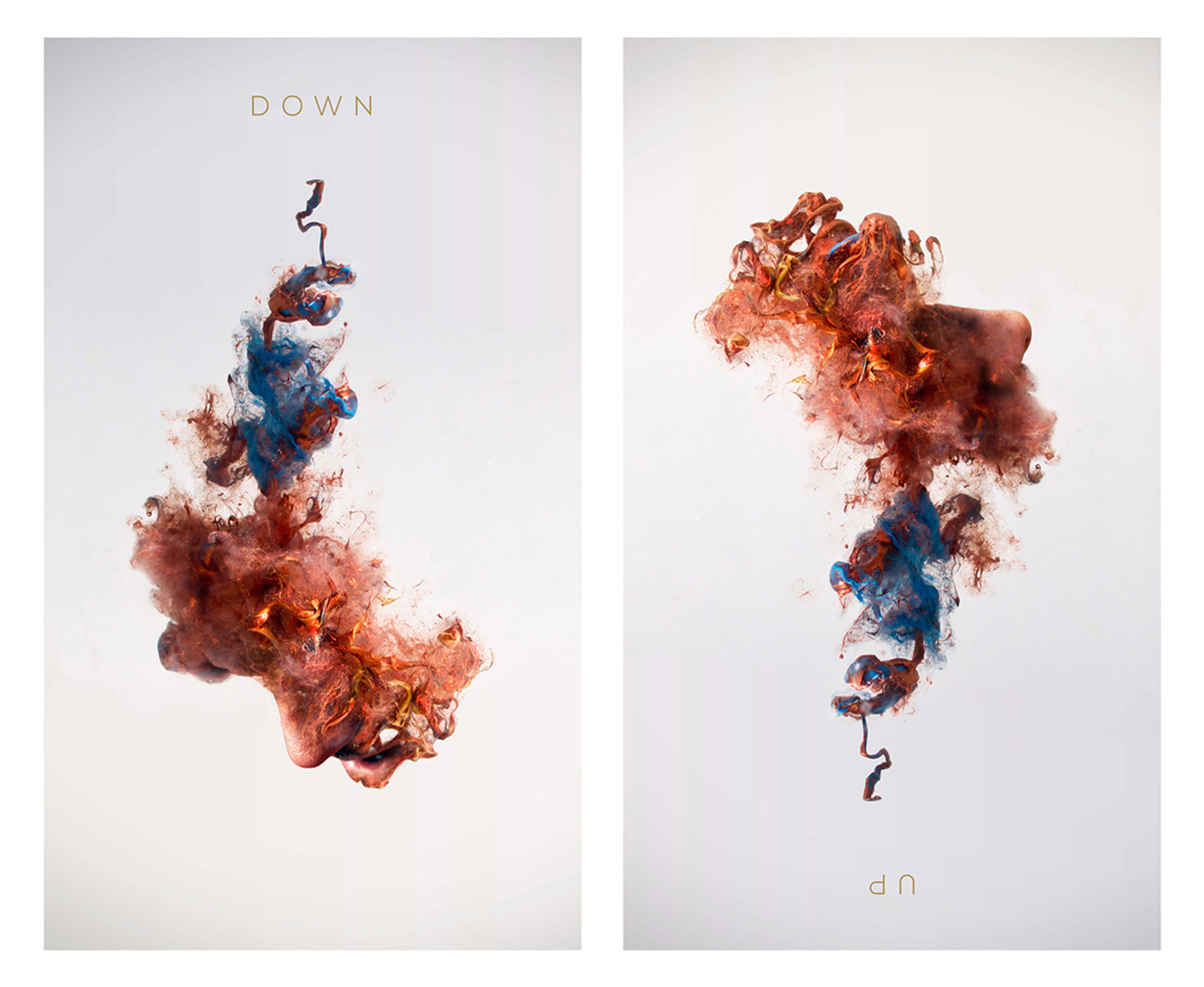 up and down portraits ink into water