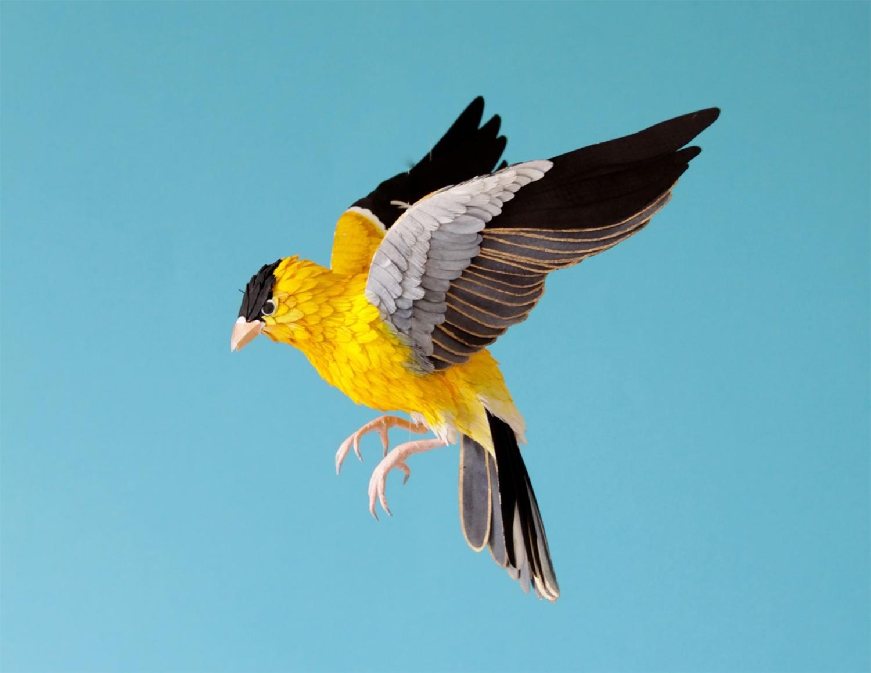 yellow and black bird, paper art by Diana Beltran Herrera