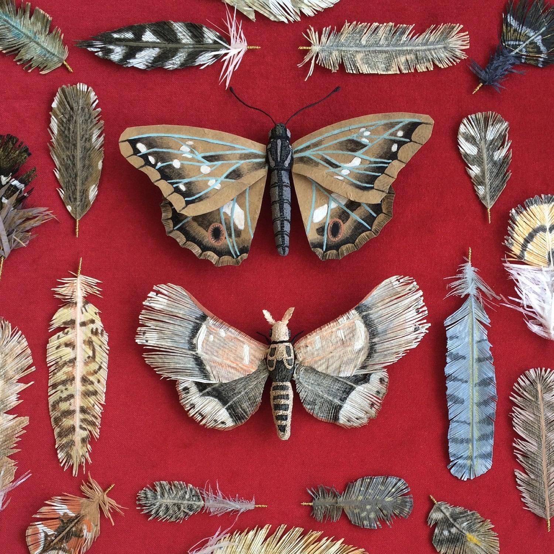 butterfly paper art by woodlucker