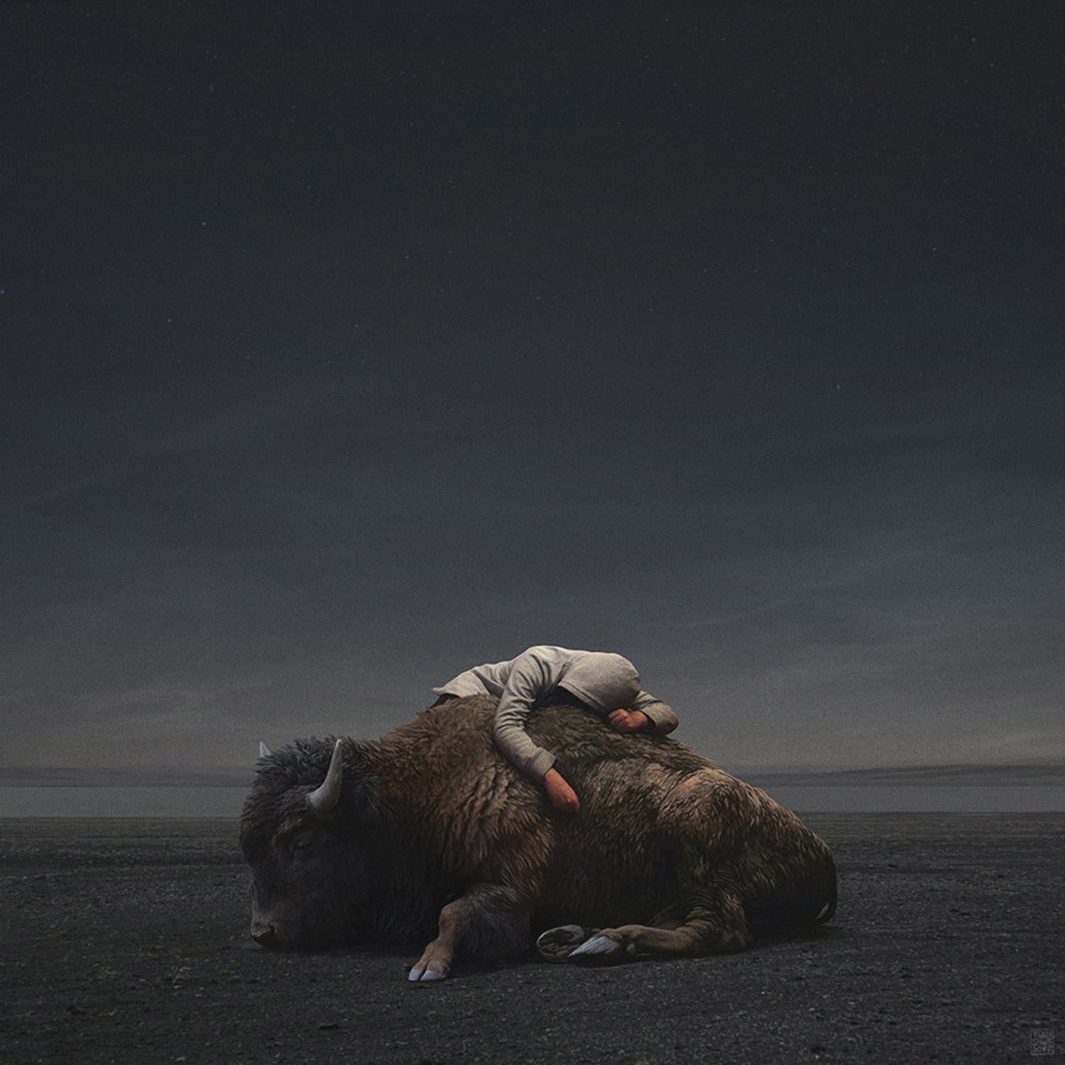 Yuri Shwedoff, Sleep - man lying on buffalo in apocalyptic wasteland