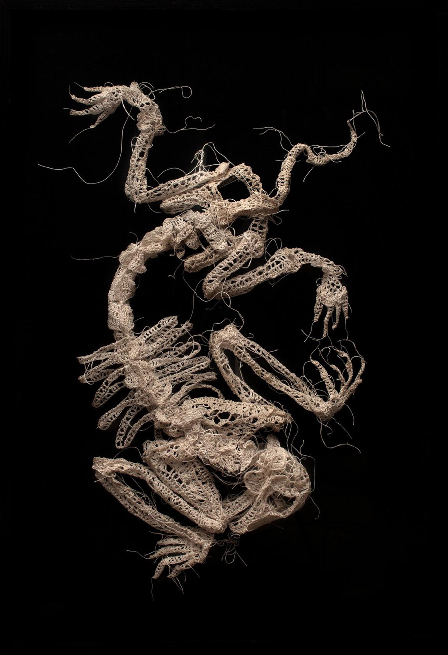 Caitlin McCormack - crocheted animal skeleton