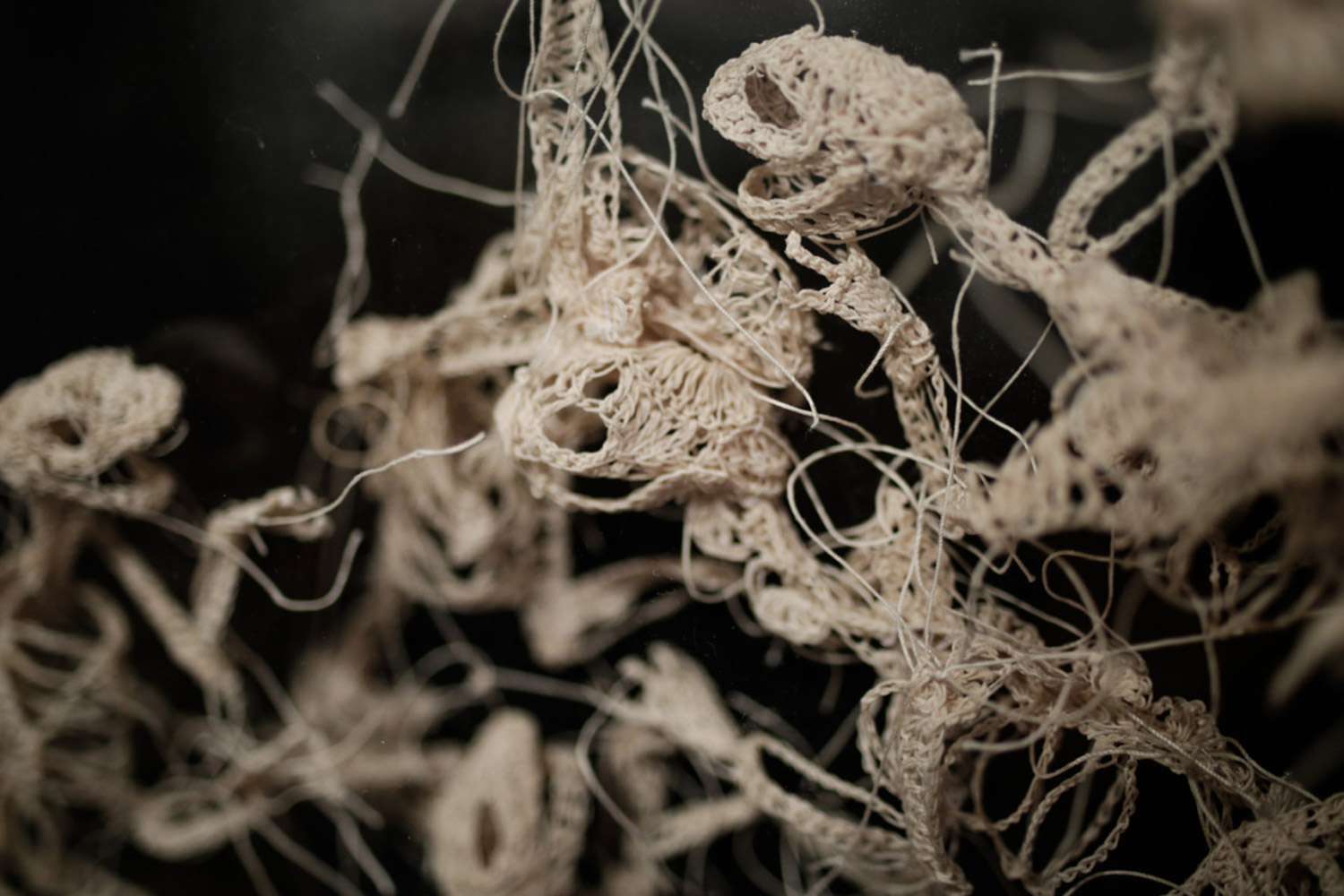 Caitlin McCormack - detail of crocheted cluster of animal skeletons