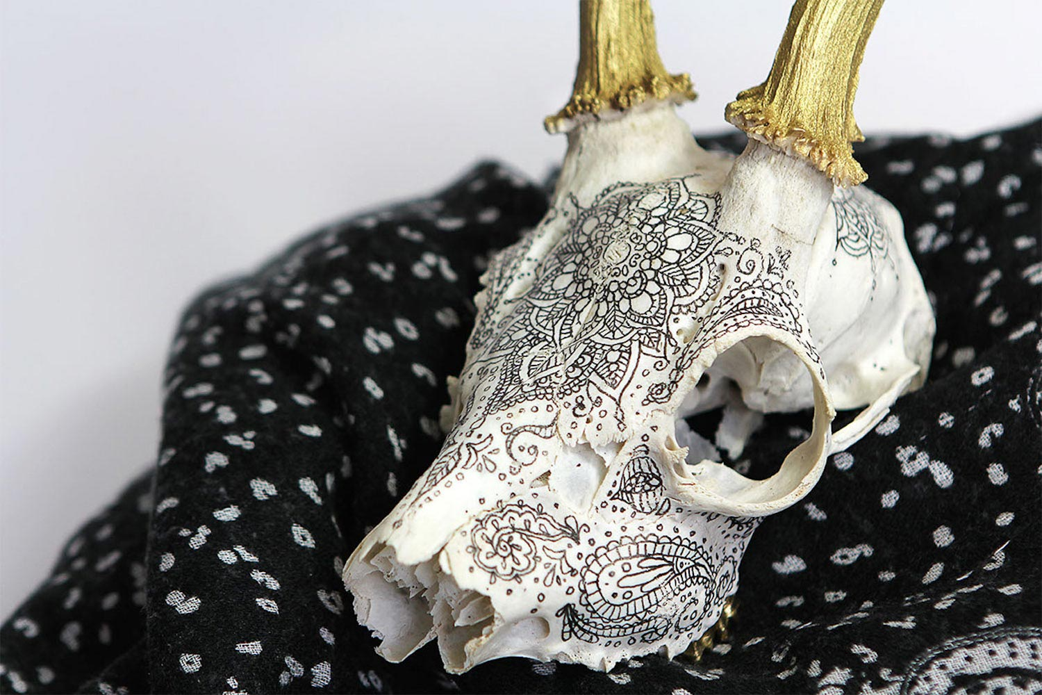 Adorned skull by Aline Cerisier