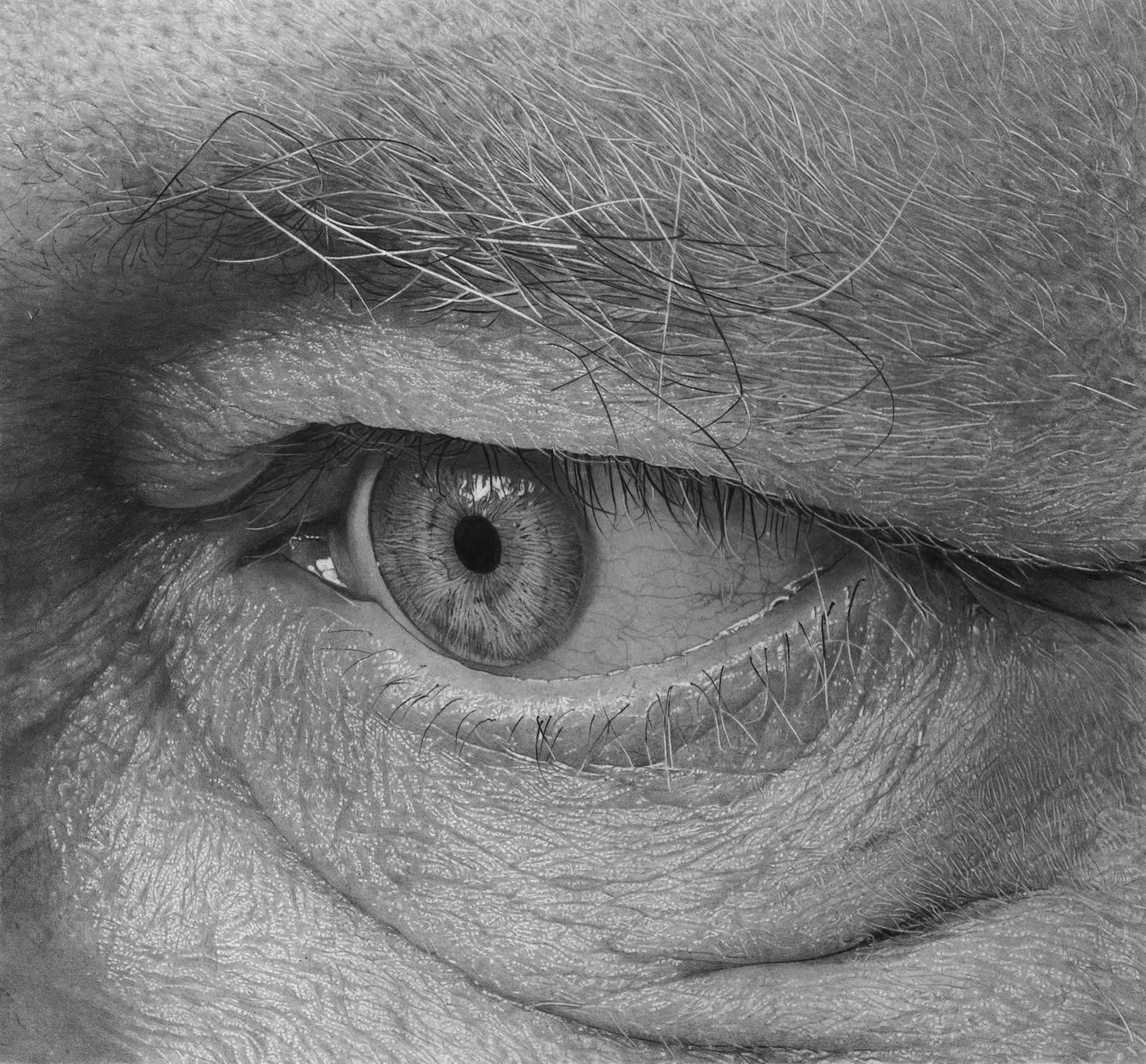 hyperrealistic eye drawing