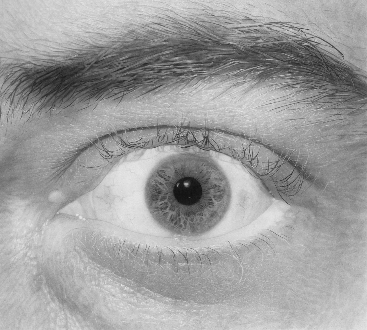 eye wide open, pencil art, hyperrealistic