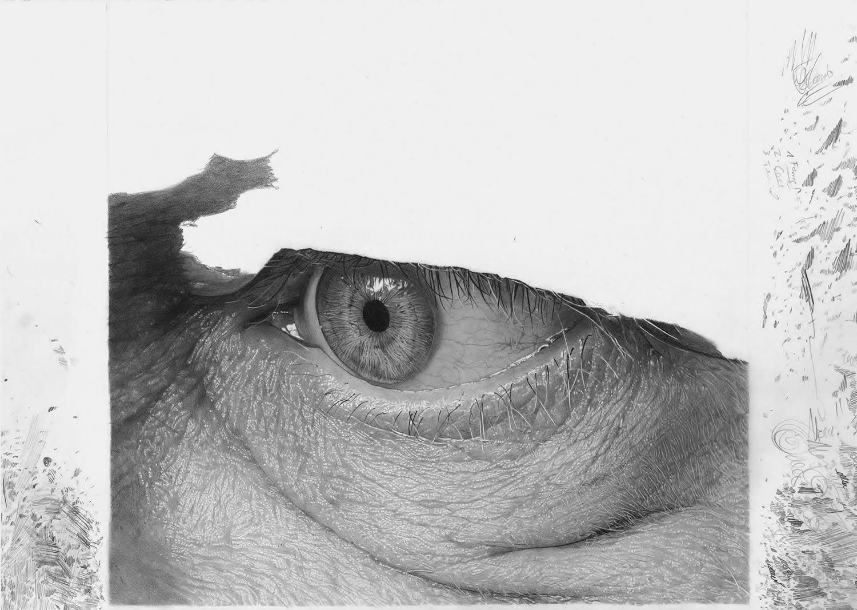 sketch of an eye, work in progress