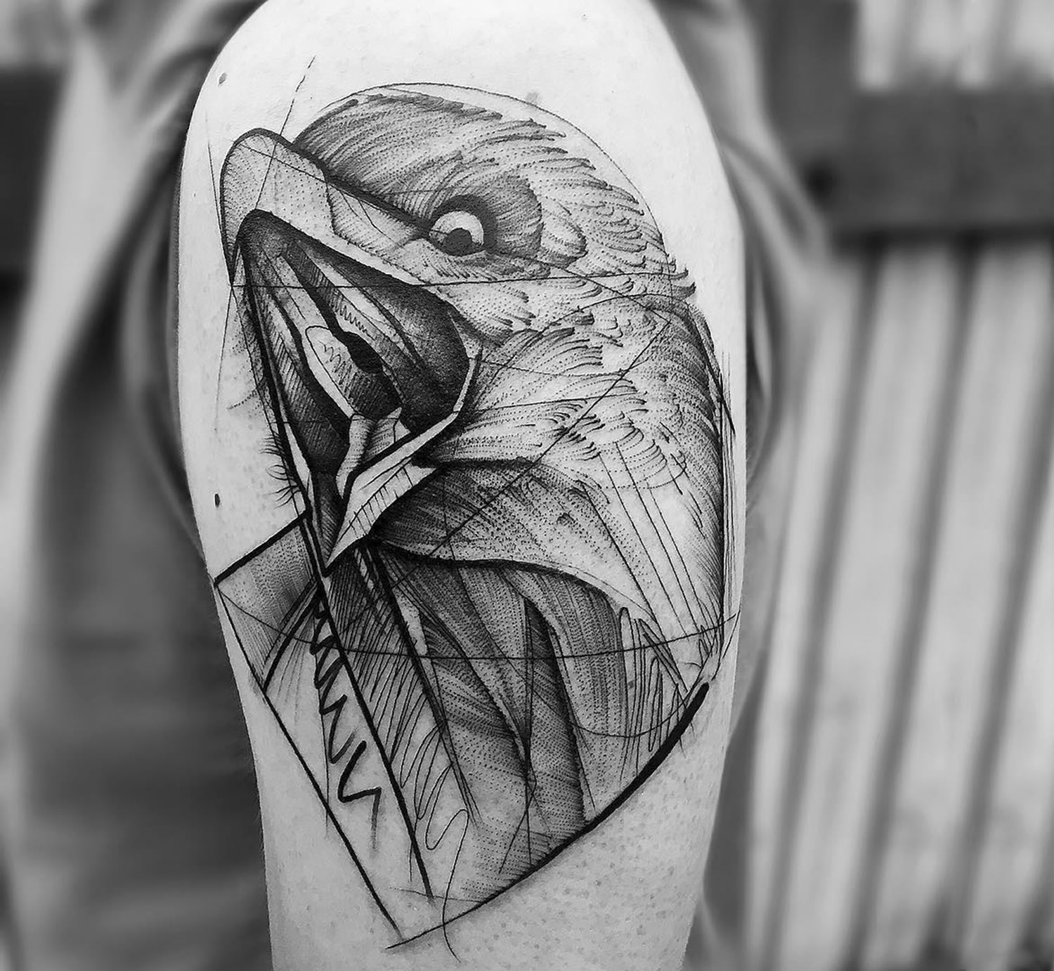 hawk tattoo, black lines
