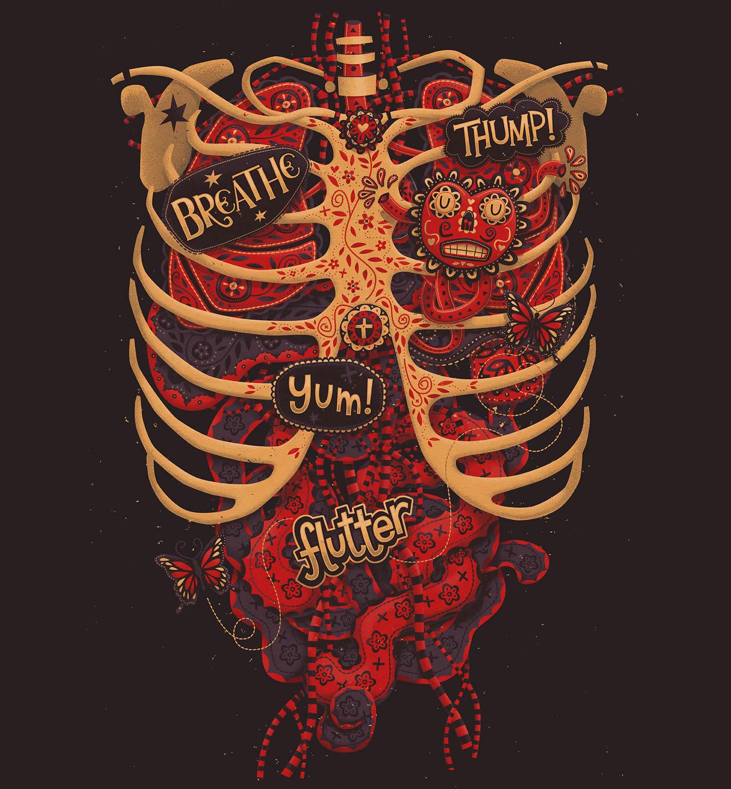 rib cage, anatomy study by steve simpson