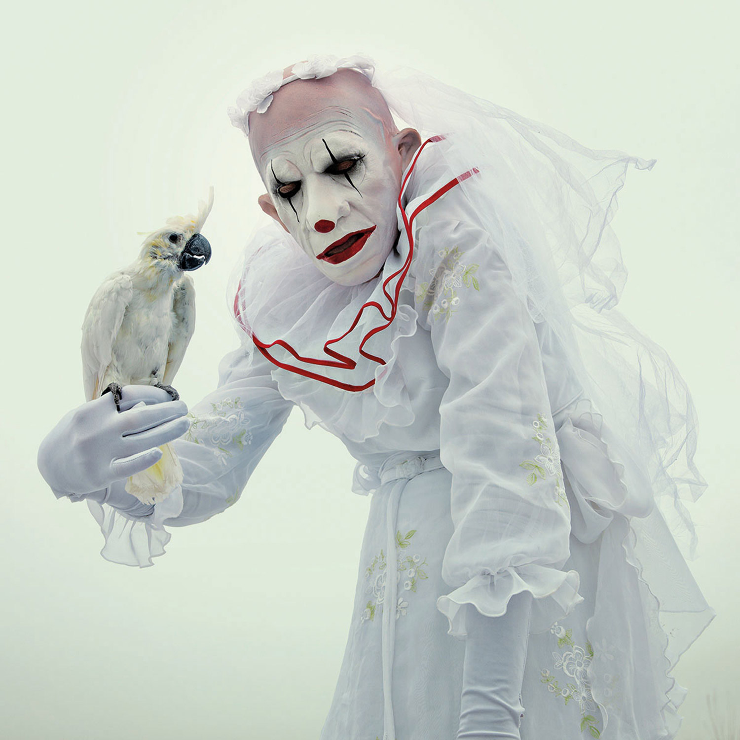Mothmeister - white clown