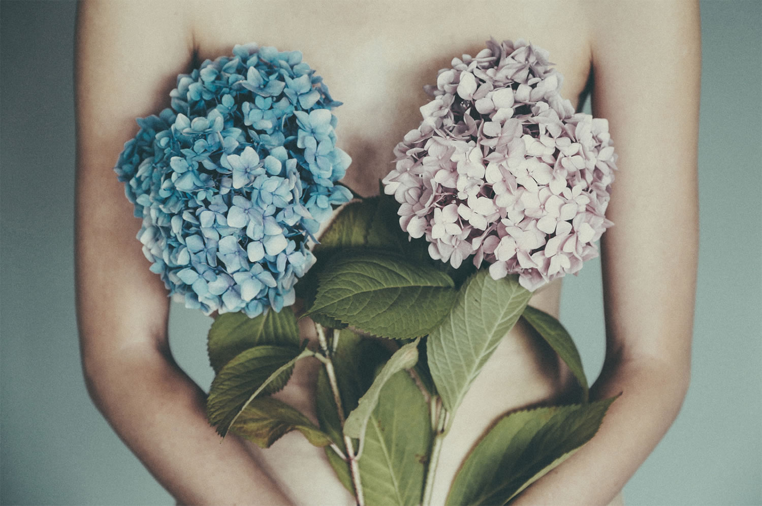 flowers over breasts