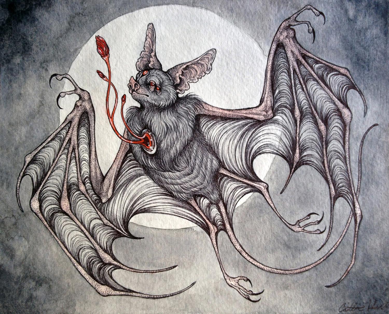 Caitlin Hackett - Nocturne