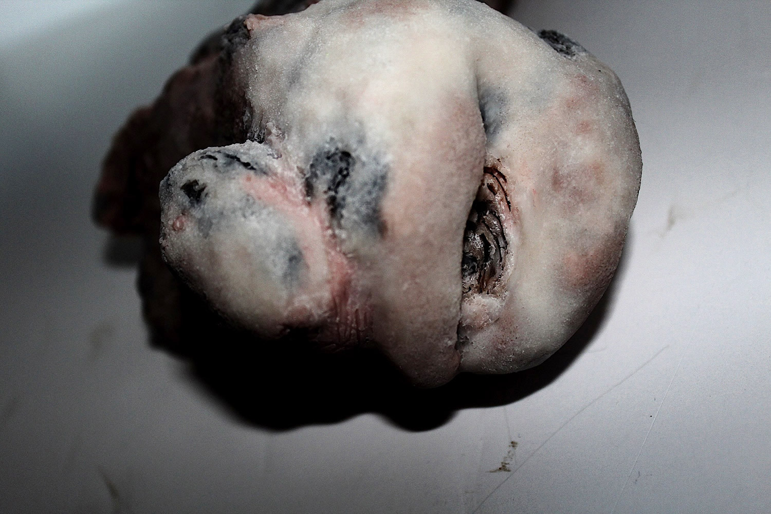 Russel Cameron, sculpture - decaying lump of flesh and bone