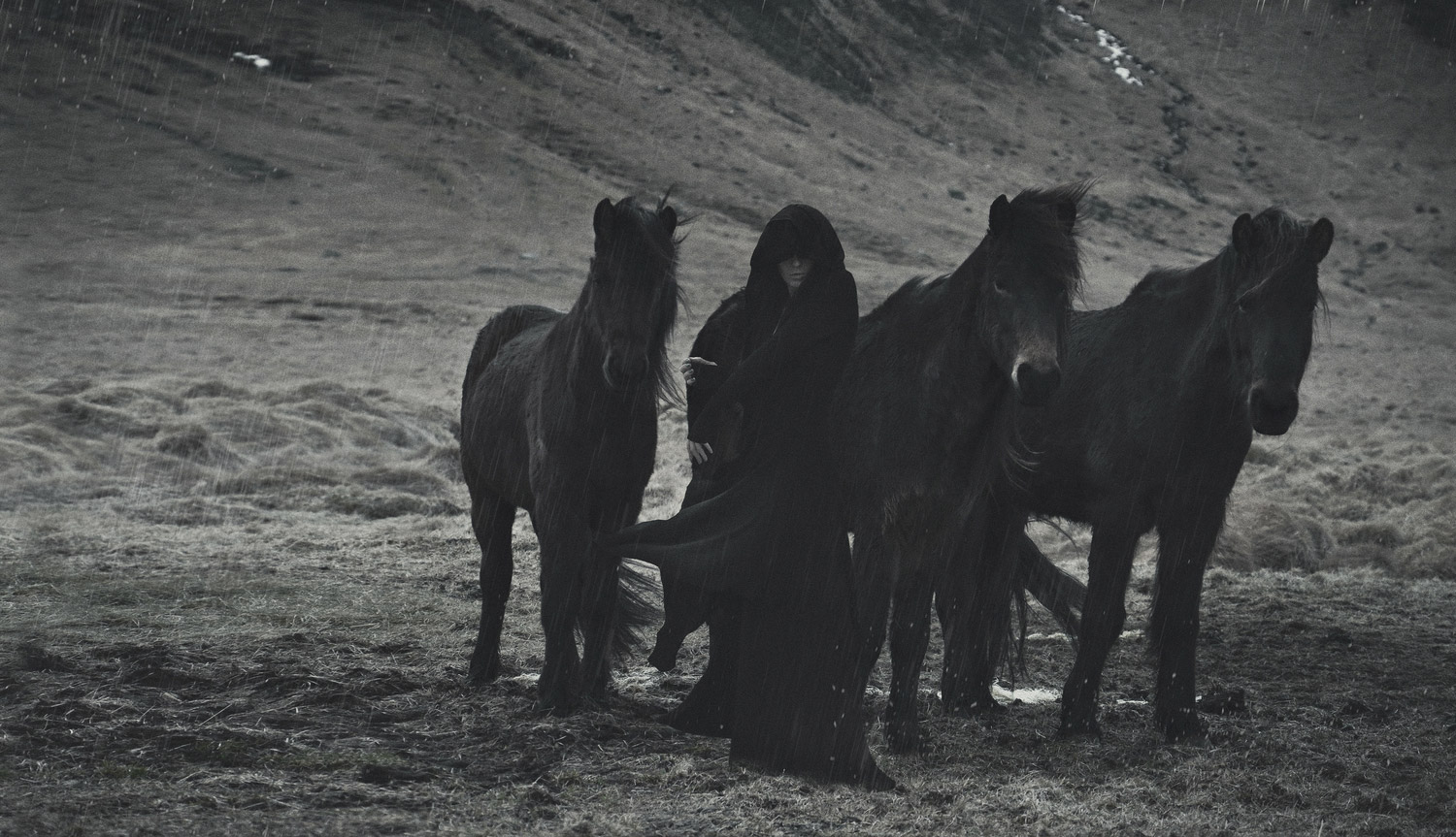 Ashley Joncas (Enigme) - Horses