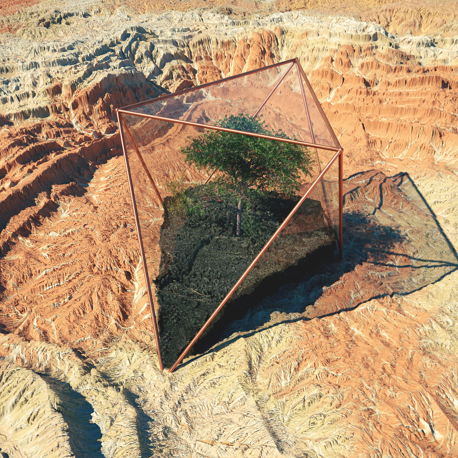 forest in see-through glass case, arizona landscape, digital art