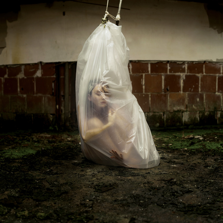 Masha Sardari - The Incubation