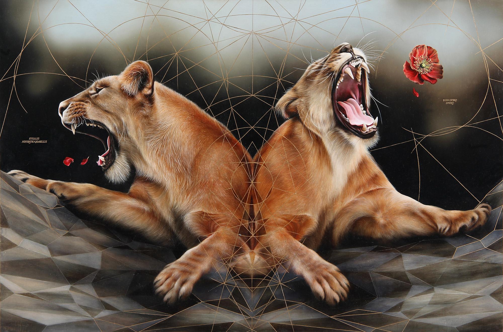 Josie Morway - Stellis, lions